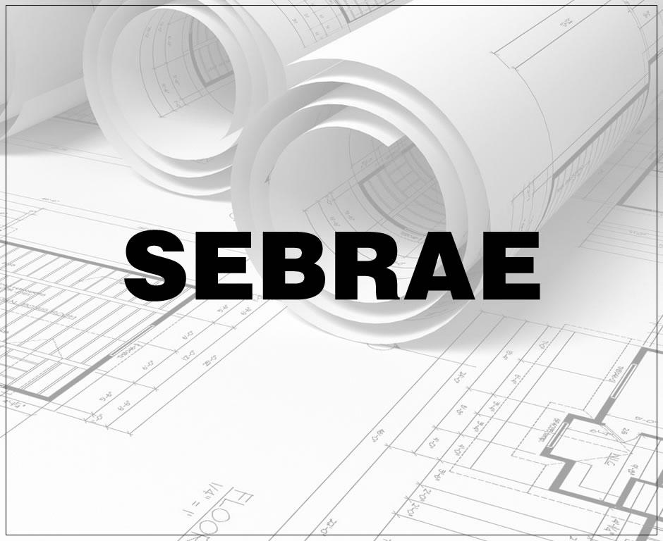 sebrae02